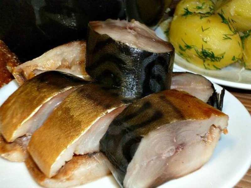 Скумбрия: вкуснейшая золотистая рыбка без коптильни и химии