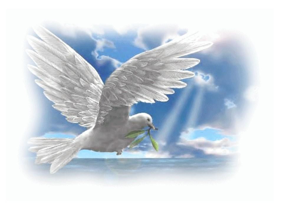 Какого цвета твоя птица счастья? Проверь, как ты реагируешь на трудности. Психологический тест.