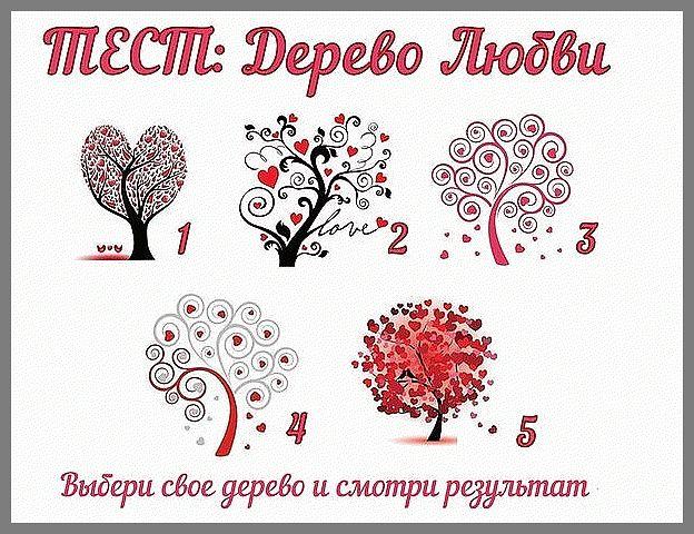 Выберите дерево, которое Вам больше нравится,и узнайте результат