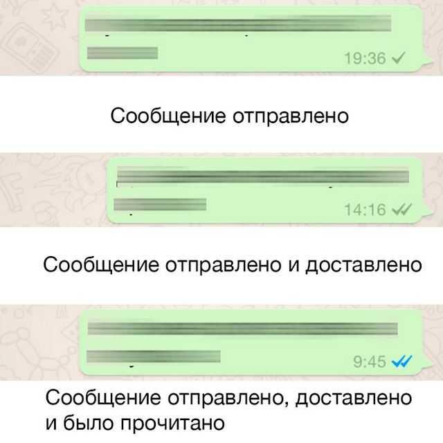 20 хитростей WhatsApp, которые превратят вас в гуру онлайн общения