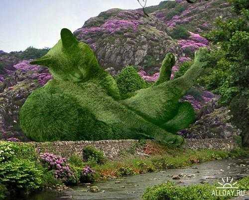 Коты-кусты Ричарда Сондерса