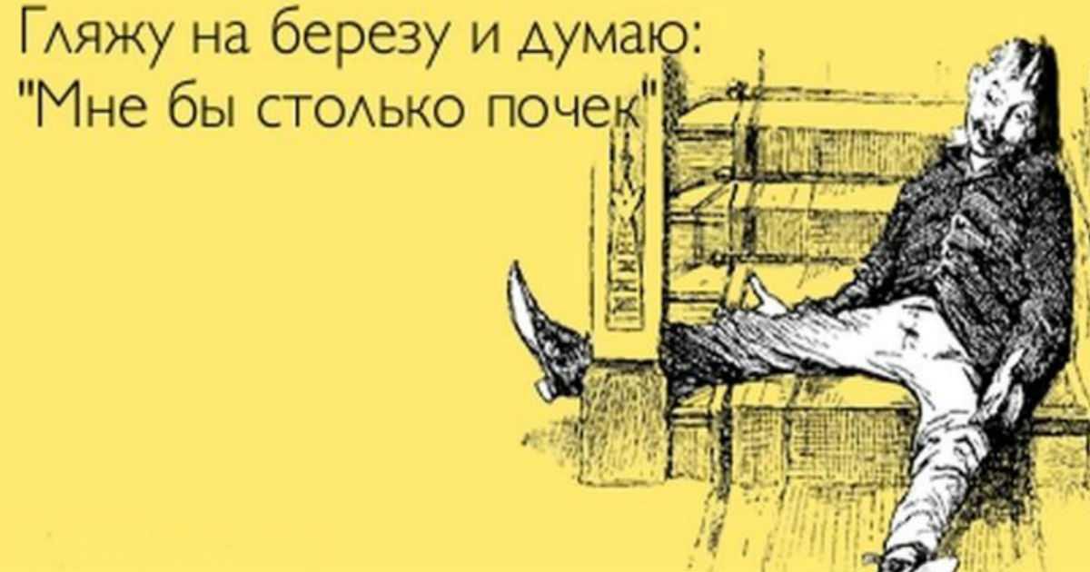 Оптимисты рулят! Без юмора жить, нельзя