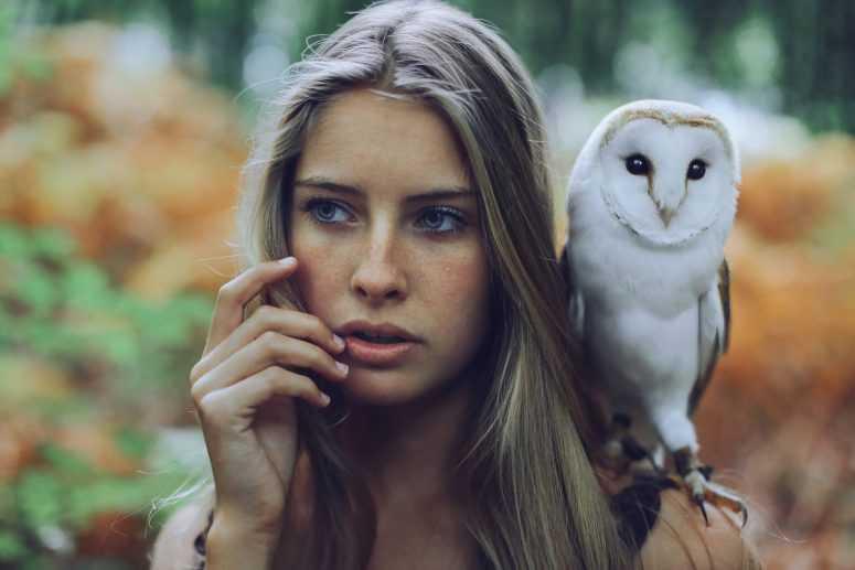 Выбранная сова, расскажет насколько женщина мудра