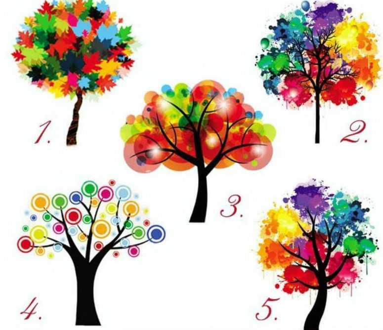 Выберите дерево и узнайте больше о вашей любви