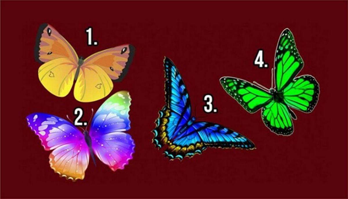 «Бабочка желаний»: Тест