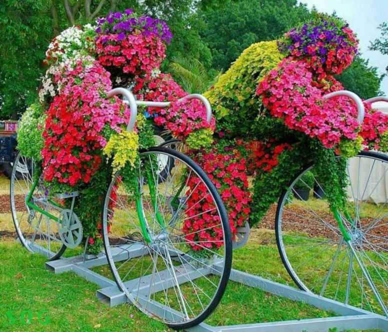 Яркие цветники украсят ваш сад! Примеры оформления цветочных клумб.