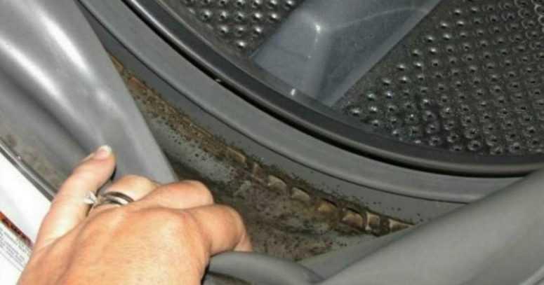 Всего 2 ингредиента спасли ее стиральную машину от плесени.
