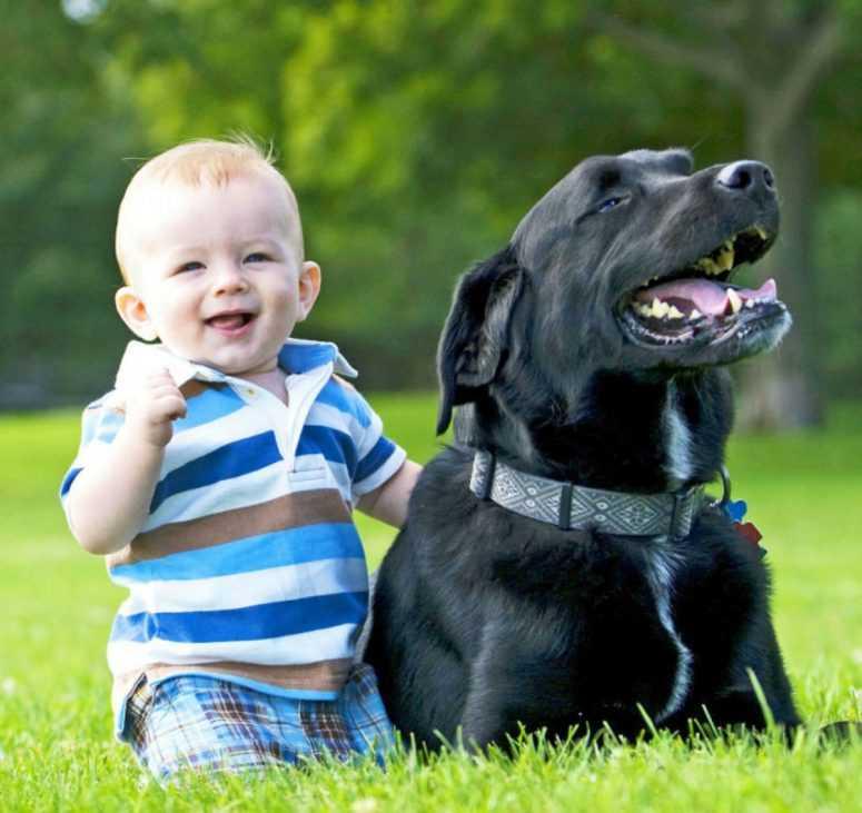 Маленький ребёнок пролез к злой собаке и...