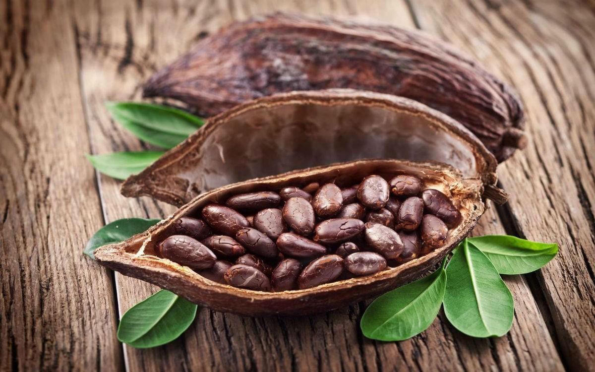 Удивительные факты о какао