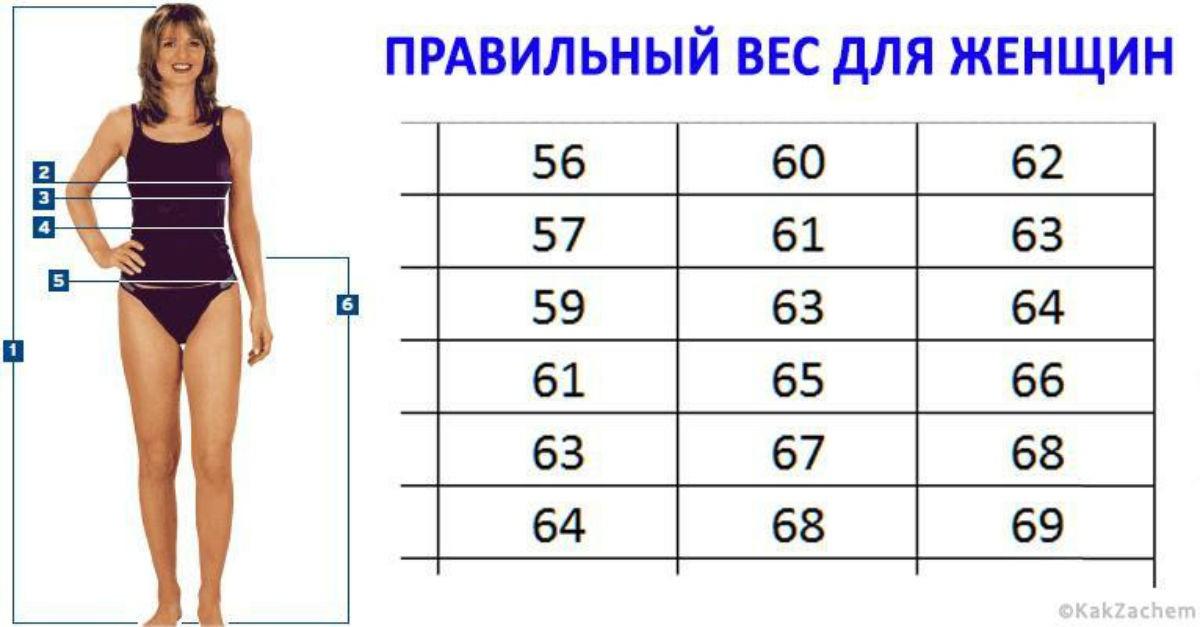 Правильный вес, который рекомендуют врачи: Таблица Веса и Роста