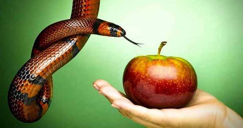 Не бойтесь переживать стыд, волнение, трепет и даже страх