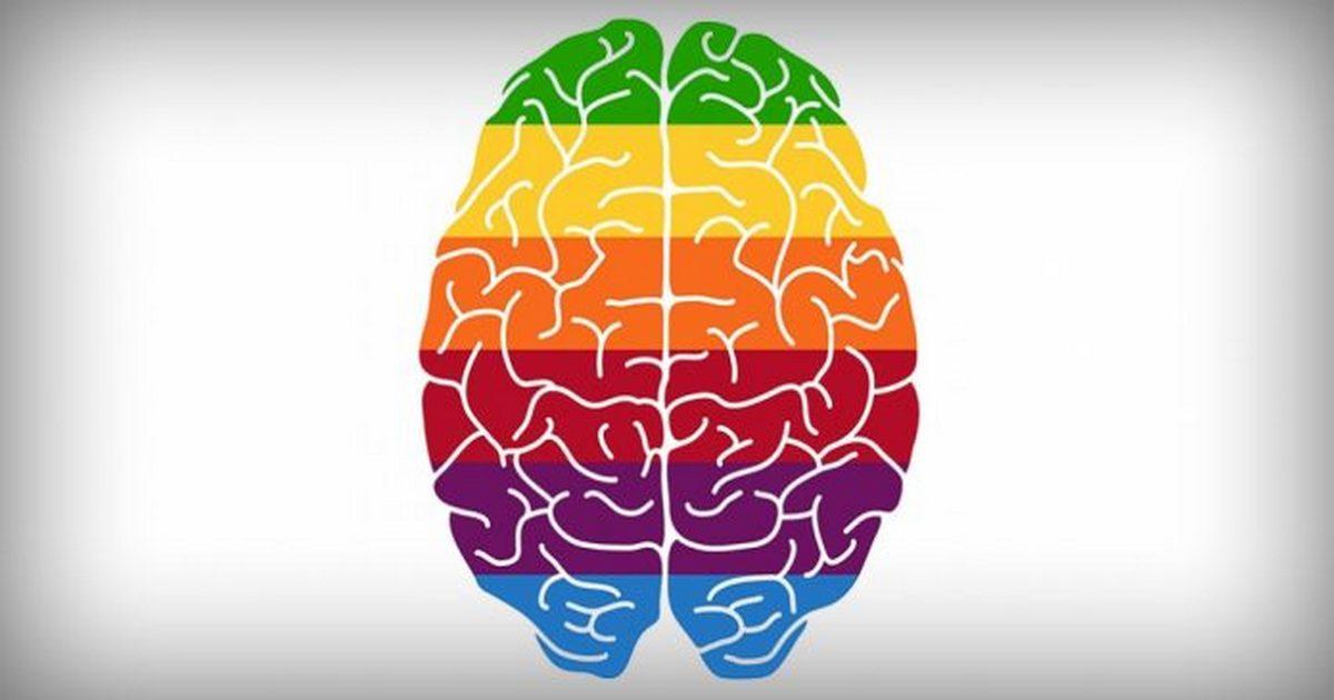 Специально для родителей: этапы развития мозга по возрастам
