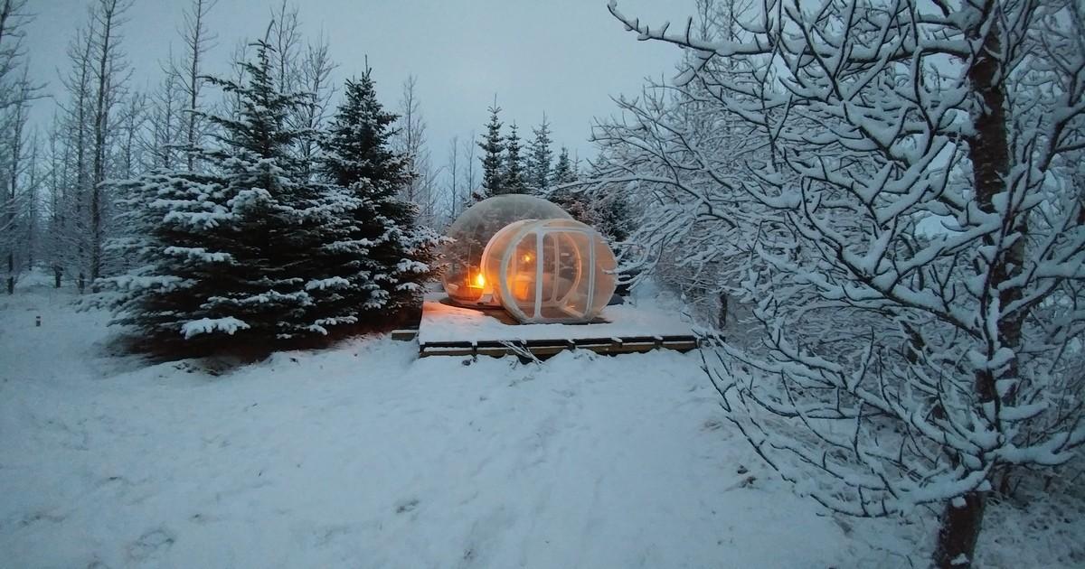 В Исландии можно переночевать в прозрачной комнате прямо в лесу