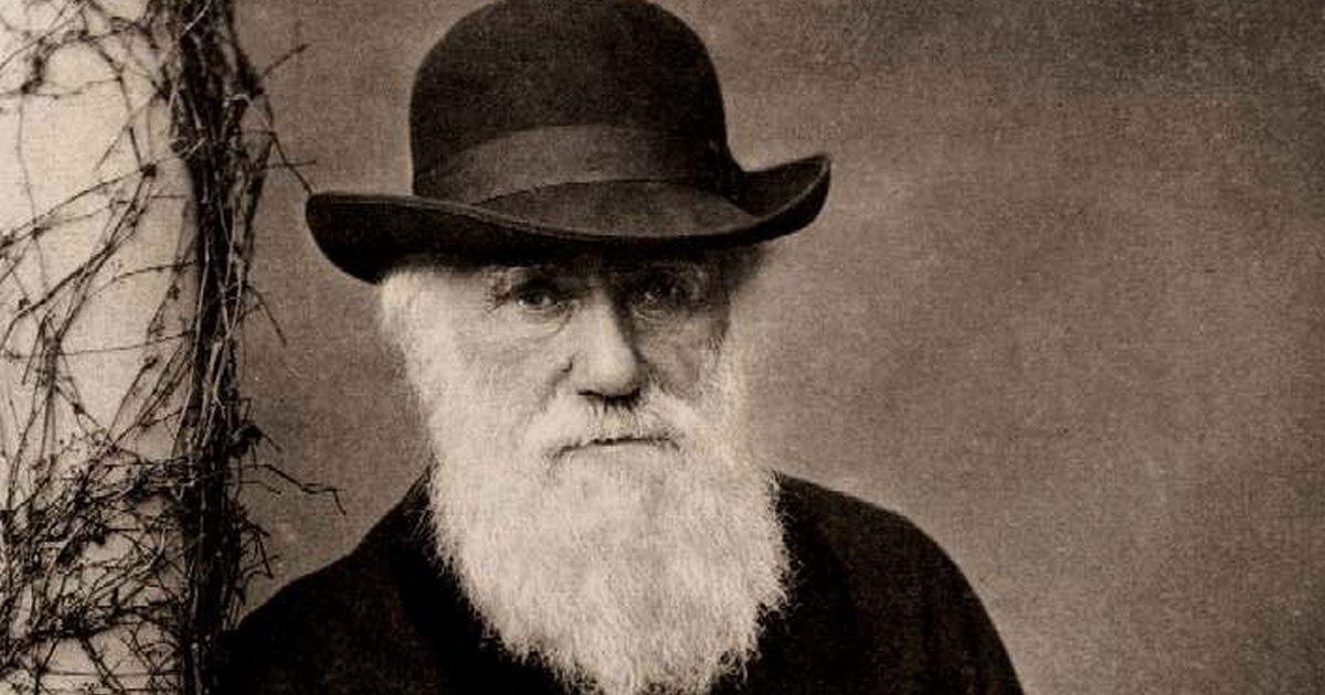 Совсем не по Дарвину: как принимать трудные решения